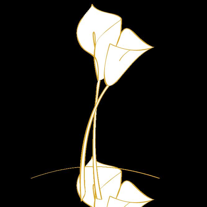 Beerdigung - Icon (Freie Rednerin)